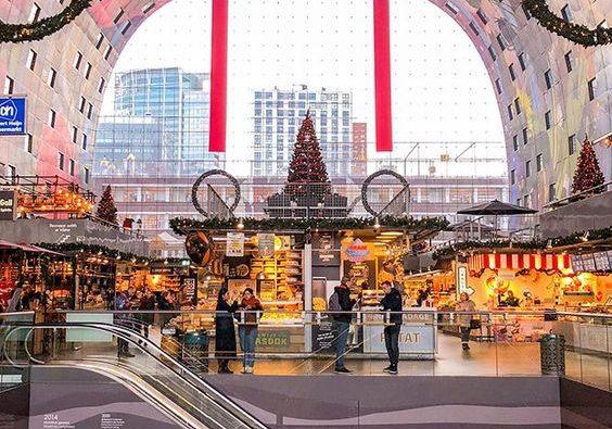 Rotterdam: dove si trova, come arrivare e attrazioni