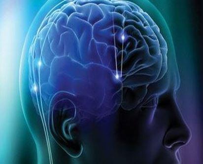 L'insula del cervello è correlata alle emozioni del gioco
